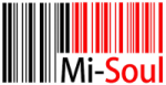 advertising-excellence-media-agency-recommendations-mi-soul
